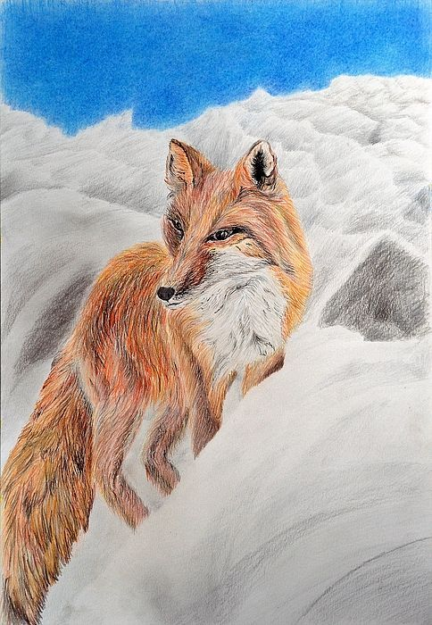 Fox by Medea Ioseliani Hello and welcome to my Art World of colors and magic I am an artist Medea Ioseliani and you are welcomed to visit my artists workshop to get ideas...