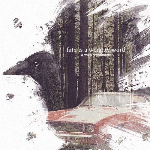 """notextinctenough: FATE IS A WEIGHTY WORD - an raven boys fanmix [listen ∆] I probably can't stop you from meeting him anyway,"""" Maura said. """"I mean, if Neeve is right about why you saw him. You're fated to meet him."""" """"Fate,"""" Blue replied, glowering at her mother, """"is a very weighty word to throw around before breakfast."""""""