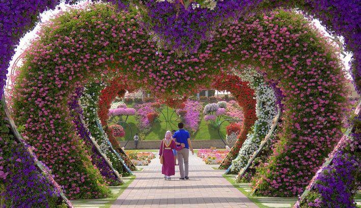 65d46157e42b1c11d9c115d156857db6 - How Big Is The Botanical Gardens