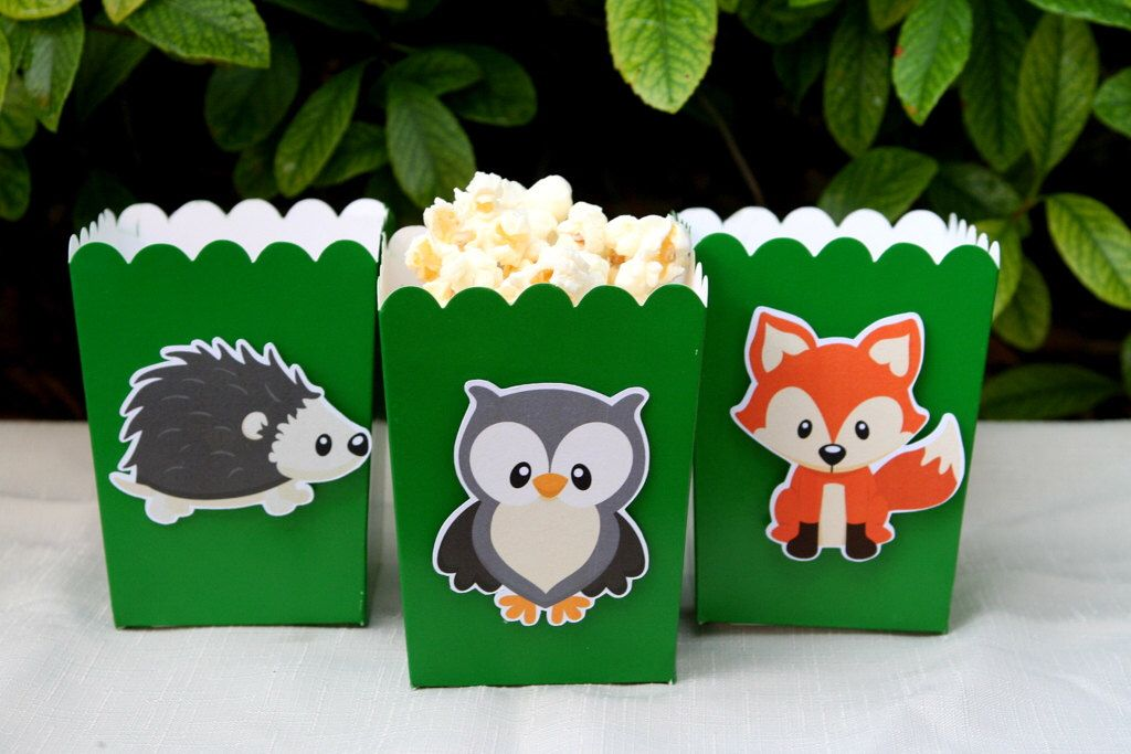 Woodland Creatures Snack Boxes- Set of 12 by PaperPartyParade on Etsy https://www.etsy.com/listing/103863289/woodland-creatures-snack-boxes-set-of-12