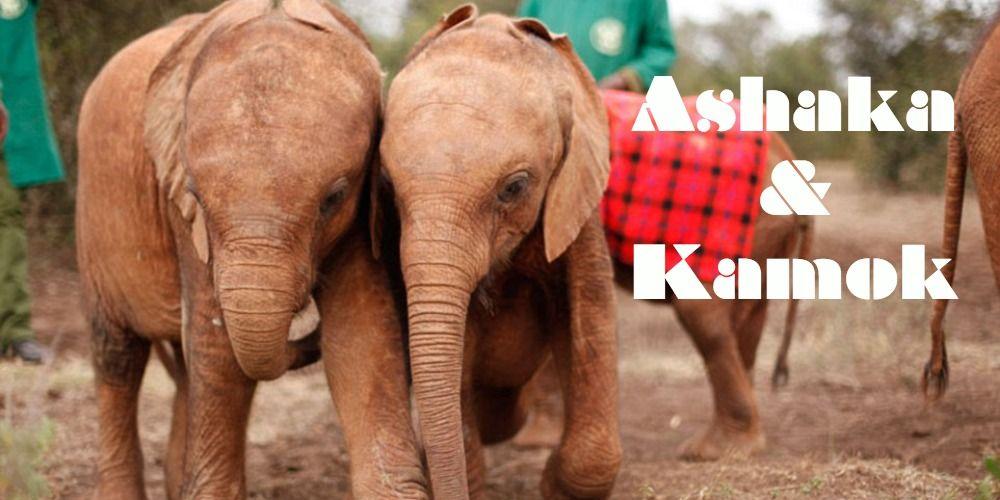 Ashaka & best friend, Kamok