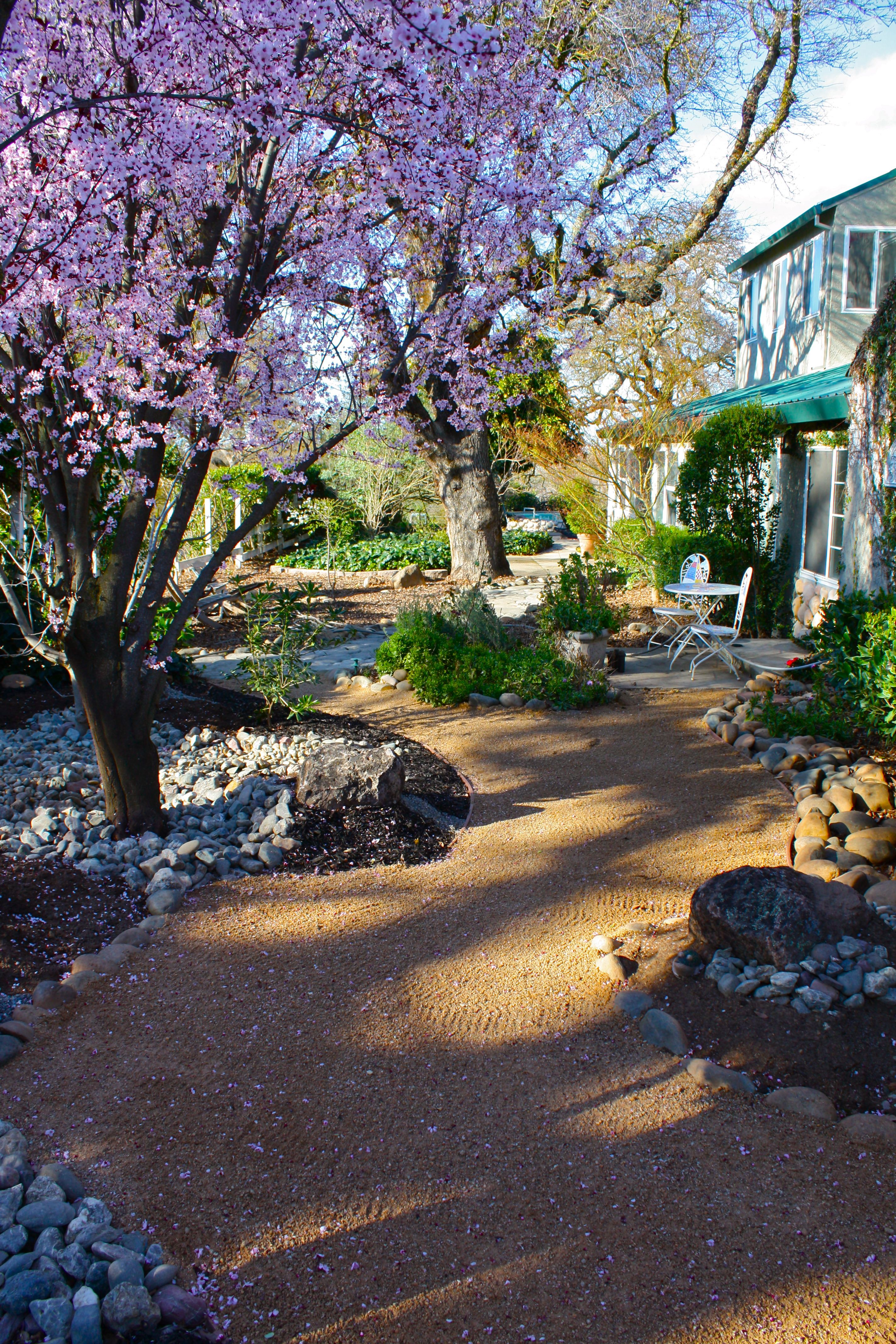 Pinmydreambackyard decomposed granite walk way with for Garden design with grass trees
