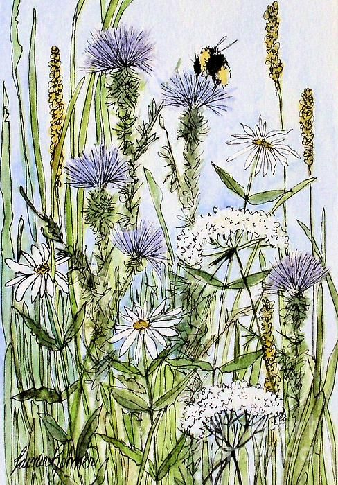 Thistles Daisies and Wildflowers by Laurie Rohner