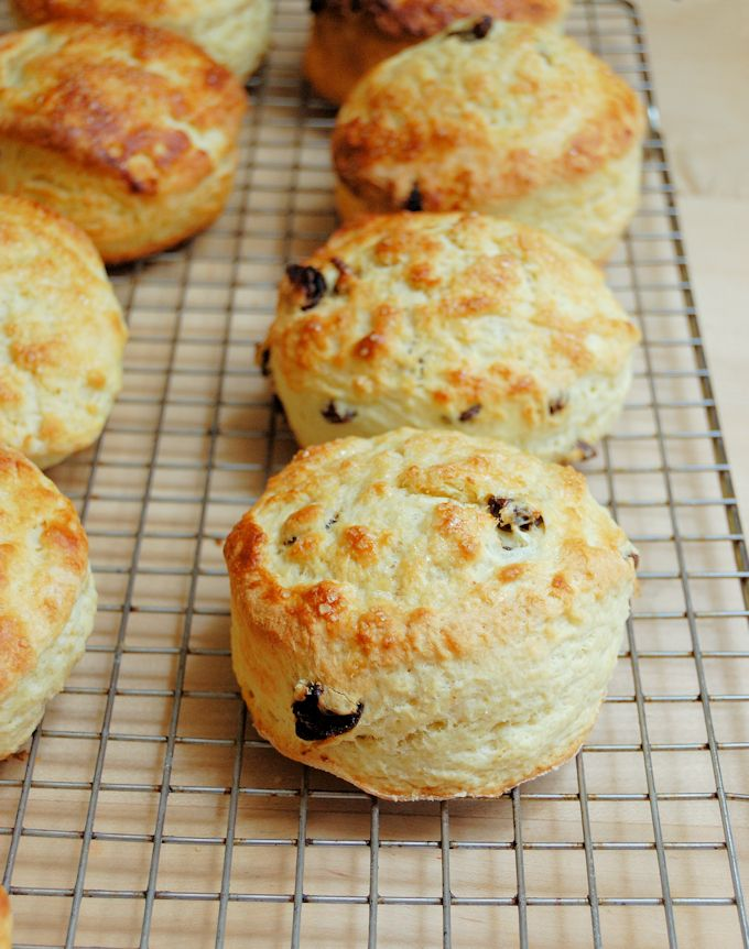 Raisin Scones English Scones Recipe Scones Recipe Easy Raisin Scones Tea Scones Recipe