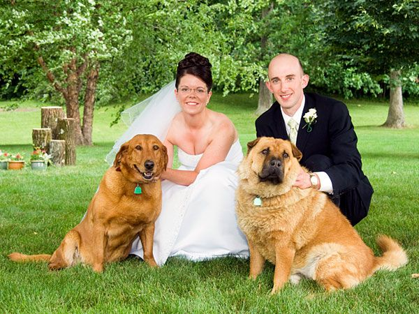 6 Tips for Including Your Dog in Your Wedding