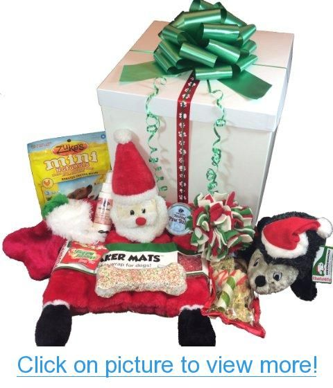 Holiday Treats and Toys for Dog Gift Box - 9 Piece Set