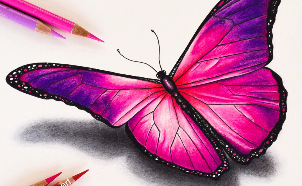 Download Drawing Butterfly Colour Download Easy Butterfly Drawing With Colour Pencils In 2020 Butterfly Drawing Butterfly Drawing Images Pencil Drawings Of Flowers