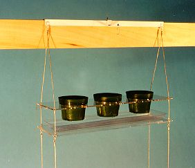 Indoor Window Gardening With Indoor Window Plant Hangers   I Believe These  Could Be Used For