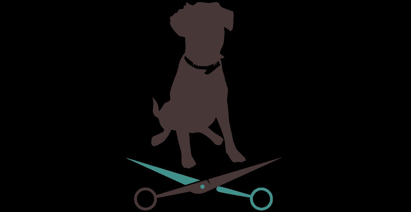 Die Richtige Pflege Fur Ihren Hund Bei Apollo Hunde Friseur Salon Koblenz Hundewaschsalon Zahnpflege Krallen Schneiden Ohrenp Hund Trimmen Hundesalon Hunde
