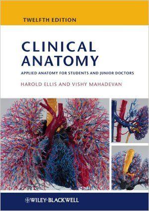 ellis anatomy pdf free download file size 018 00 mb file type