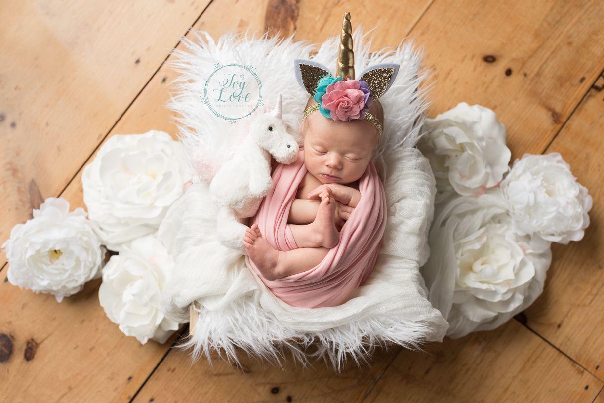 Posed Newborn Photography   North Shore Newborn Photographer