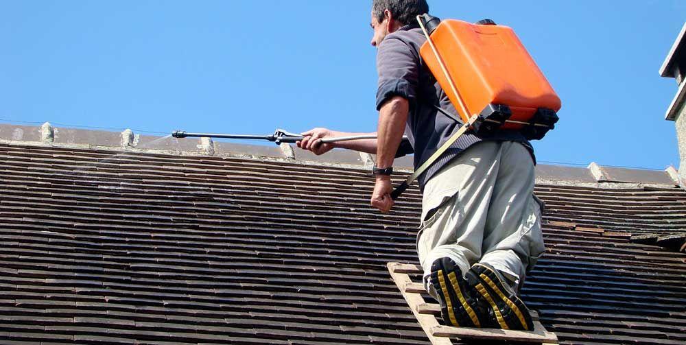 prix d un d moussage de toiture toiture couverture pinterest demoussage toiture toiture. Black Bedroom Furniture Sets. Home Design Ideas