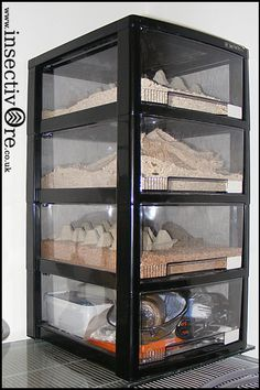 Mealworm Breeding Box Culture Setup Habitat Livefood Adults Worms Storage Box Rack System Meal Worms Raising Meal Worms Chickens Backyard