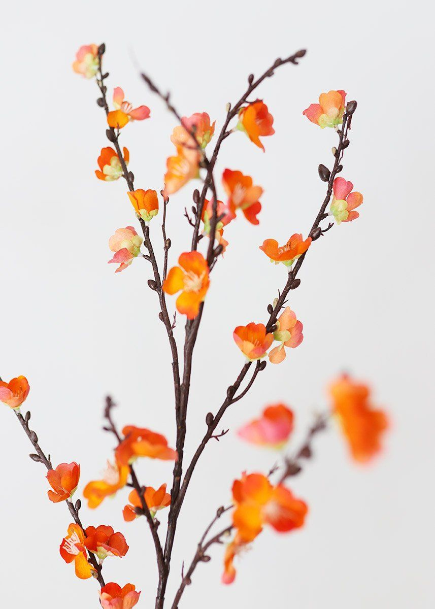 Artificial Sakura Cherry Blossom In Orange 50 In 2020 Sakura Cherry Blossom Cherry Blossom Branch Flower Branch