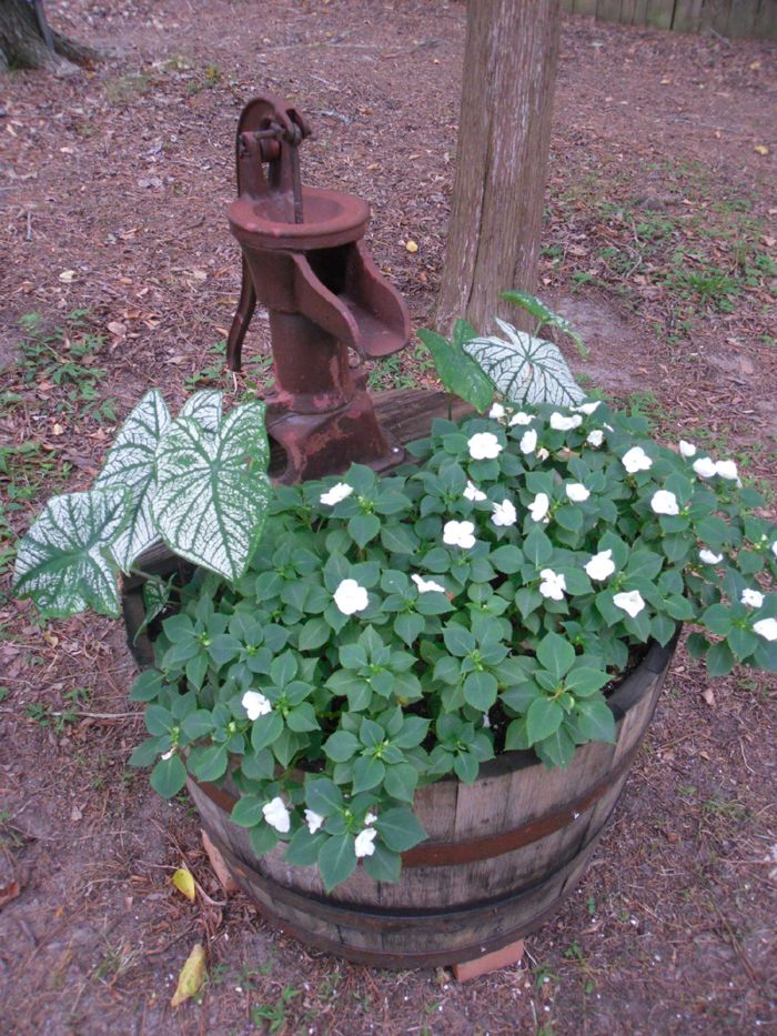 Half Whiskey Barrel Planter With Antique Water Pump With Images