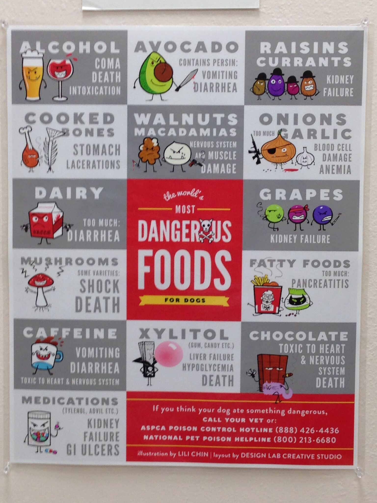 Not Good For Dogs Dangerous Foods For Dogs Dog Food Recipes