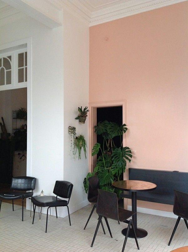Attraktiv Wandfarbe Apricot   Der Frische Trend Bei Der Wandgestaltung In 40  Beispielen In 2018   Style   Pinterest   Wandfarbe, Pflanzen Und Schwarzer
