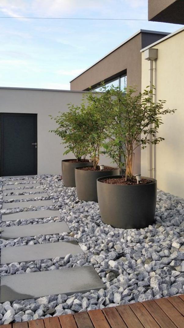 Photo of Poire de roche (2) Ces jardins non sont pas seulement pour ces pelouses après l…