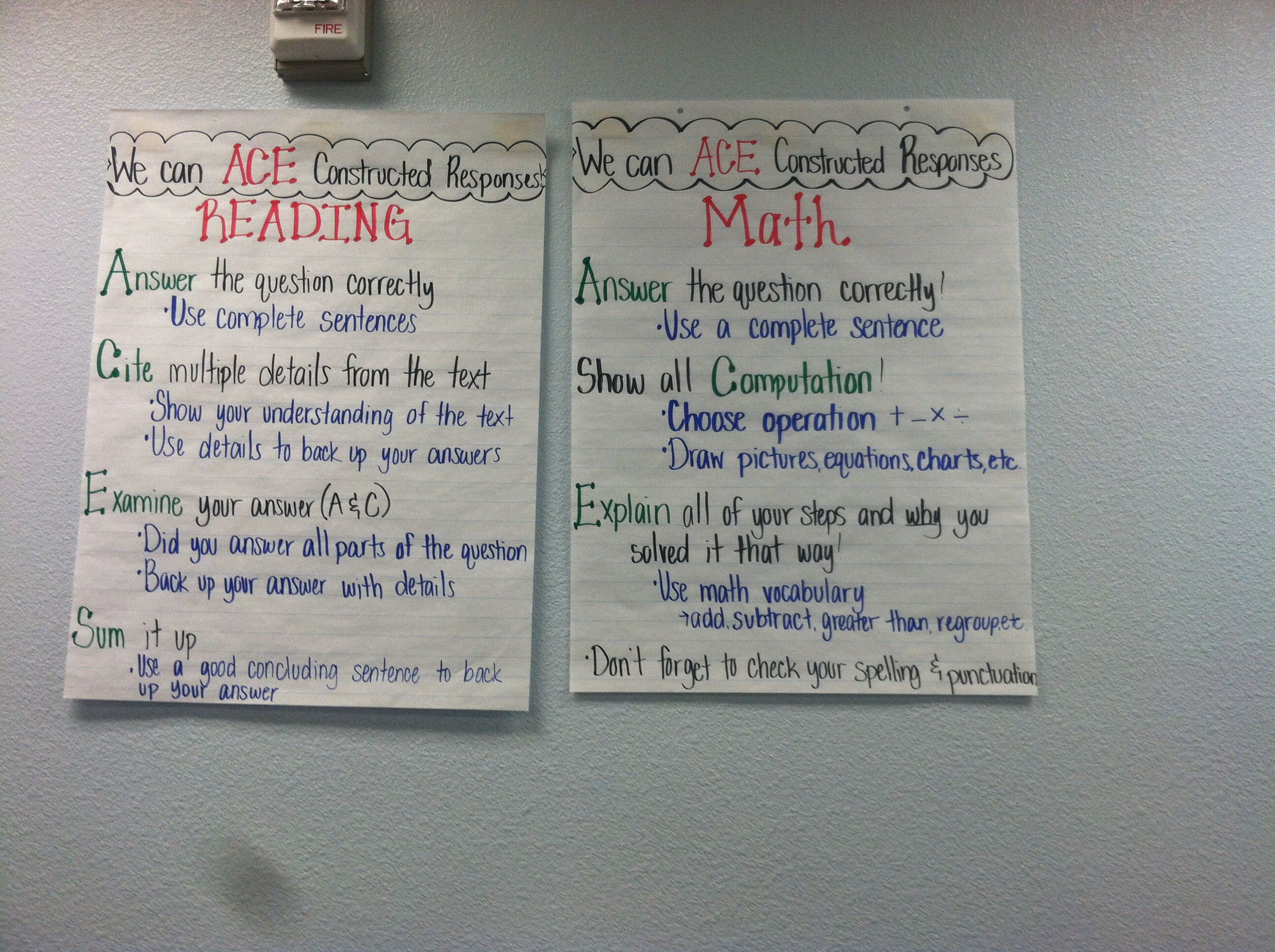 Aces Constructed Responses For Math And Reading