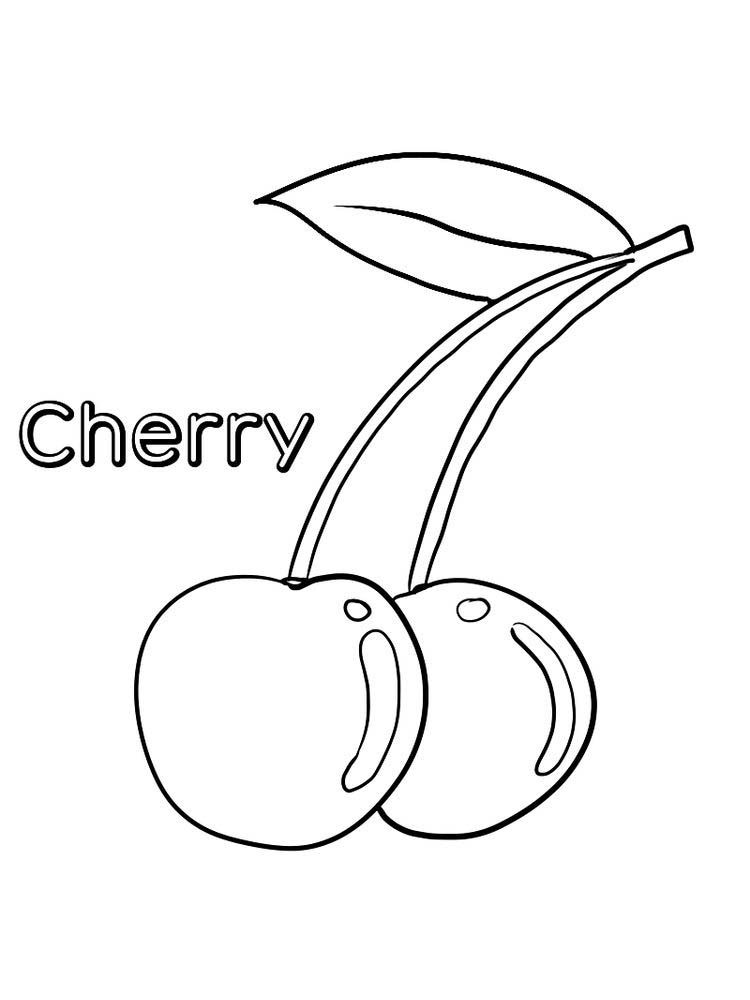 Cherry Coloring Page Print Cherry Is Part Of The Rosaceae Family