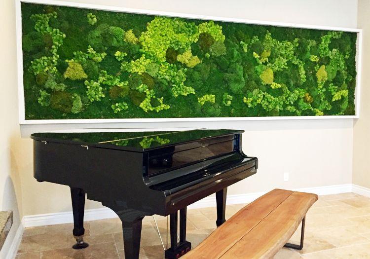 Mooswand Selber Machen Pflanzenwand Moosbild Grüne Wand Wandgarten