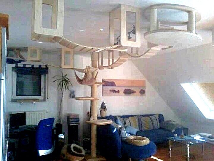 12 Amazing Cat Installations You Have To See This Amazing Furniture 6 Is Awesome Cat Tree Plans Cool Cat Trees Cat Shelves
