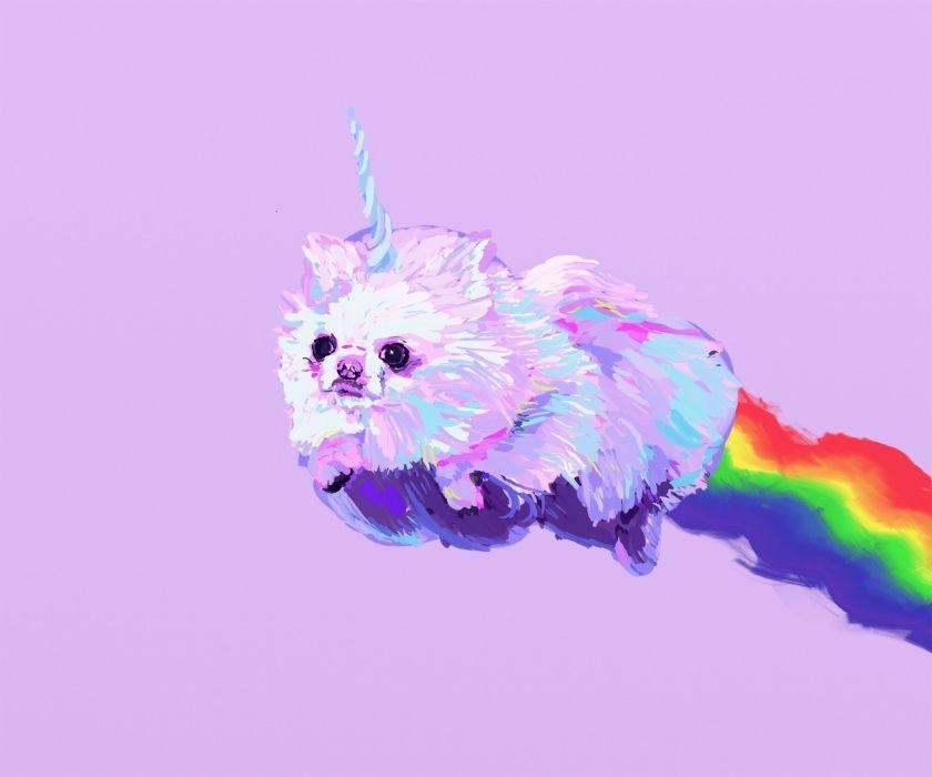Pomeranian Dog Dogs Fantasy Unicorn Unicorn Wallpaper Pink Unicorn Wallpaper Unicorn Funny