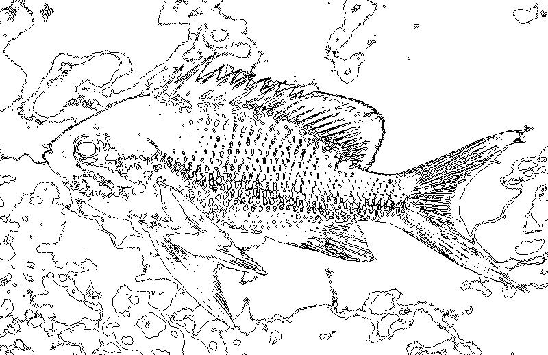 Kids Nurie 印刷可能無料 さかな ぬりえ 魚イラスト ぬりえ かわいい魚
