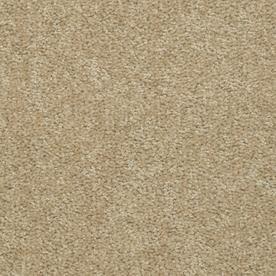 Carpet For Living Room Stucco Texture Living Room Carpet Carpet Pricing