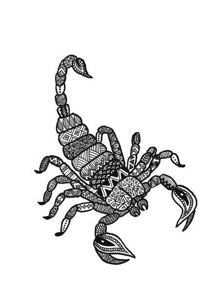 Zodiac Zentangle Scorpio Art Print By Mikaela Puranen Scorpio Art Zodiac Designs Zodiac Signs Colors