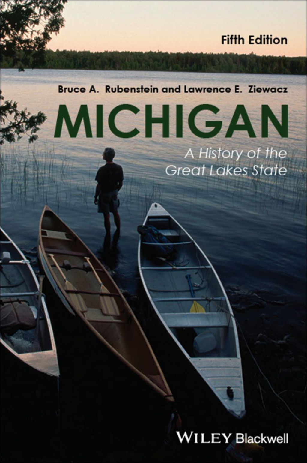 Michigan A History Of The Great Lakes State Ebook