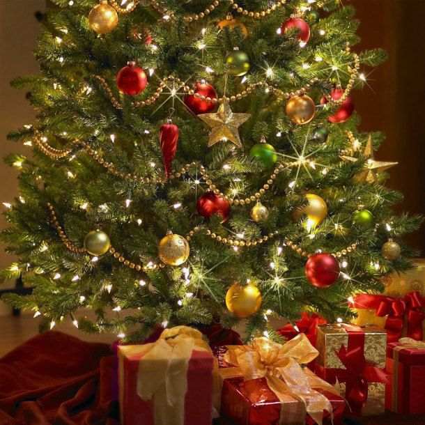 History Behind The Christmas Tree Part - 50: The History Behind Christmas - Unfollowing Jesus