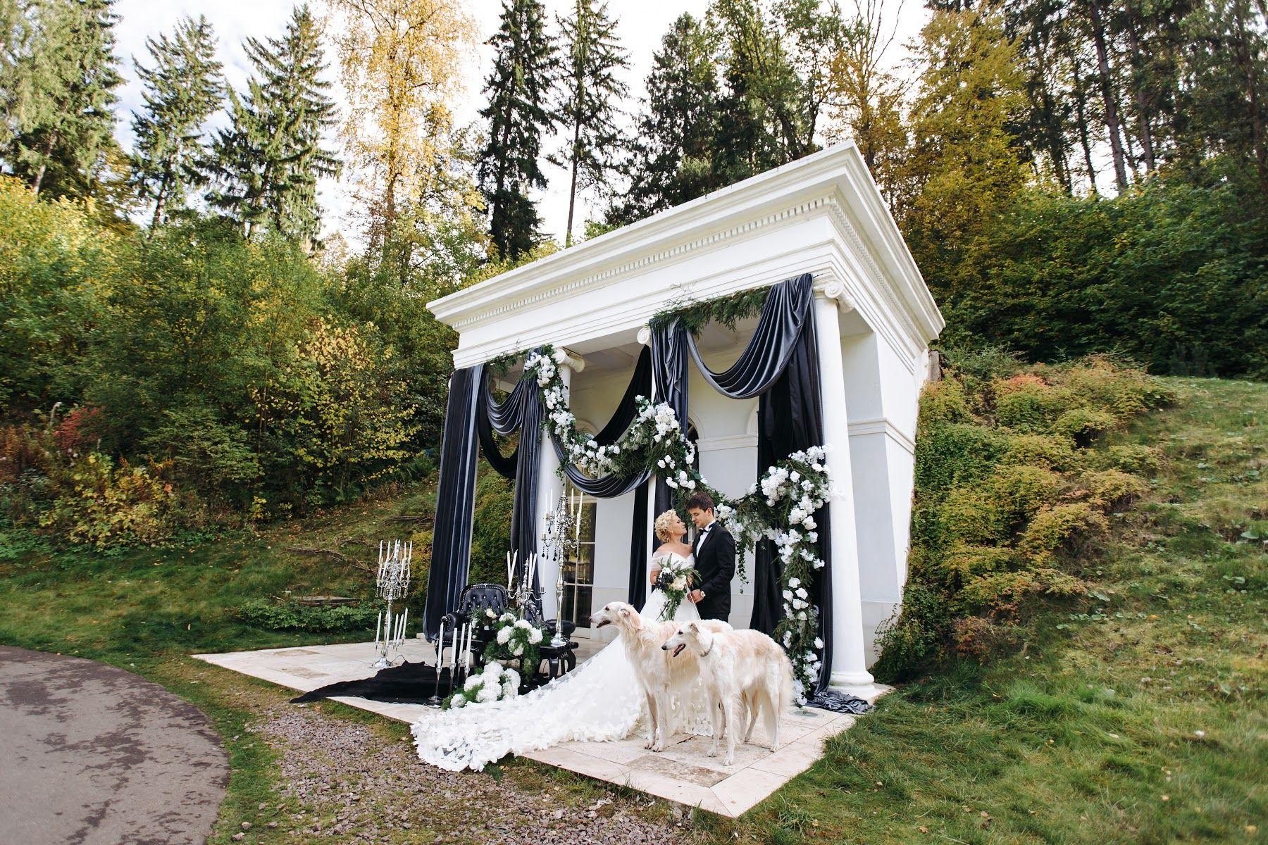 Wedding Photo Published By Andrey Nesterov On 17 January 2016 On Mywed 5272052 Wedding Ceremony Decorations Wedding Story Wedding Photographers