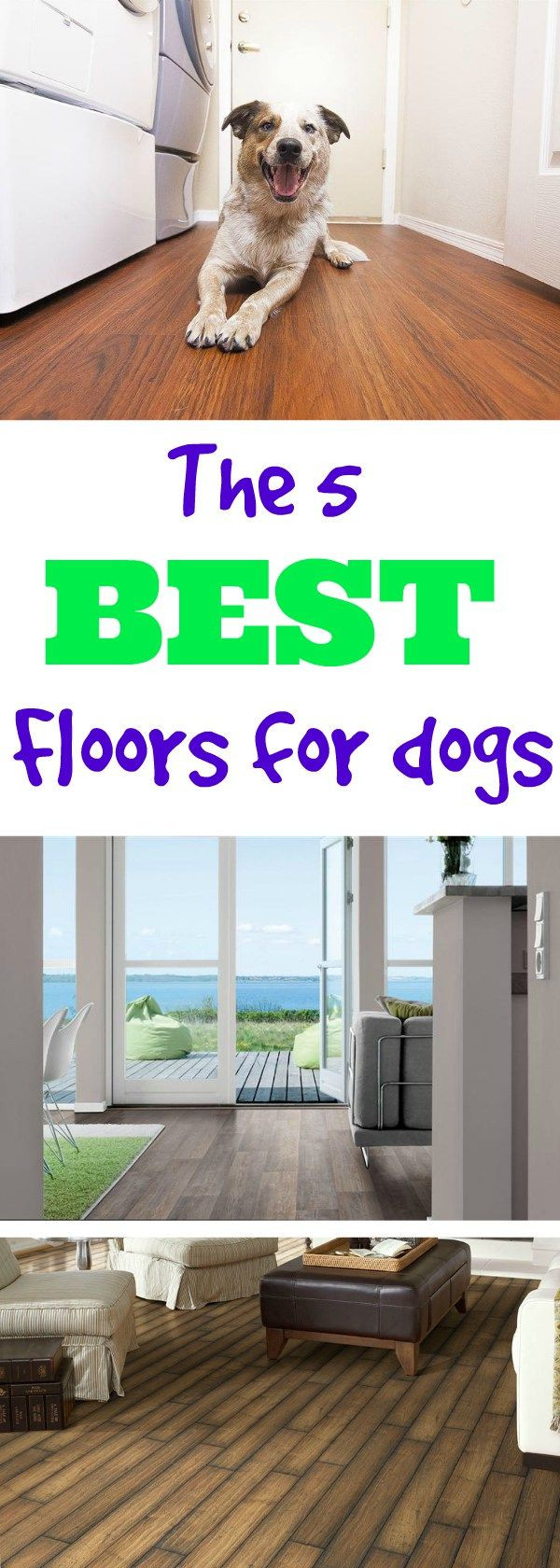 What's the Best Flooring for Dogs Best wood flooring