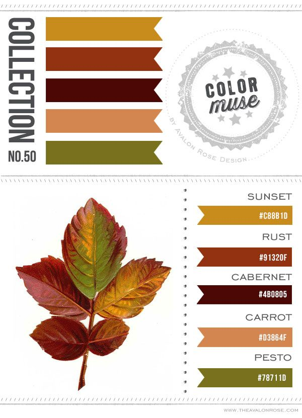 Color Muse Collection No 50 Scheme Palette Gold Green Brown Rust Orange