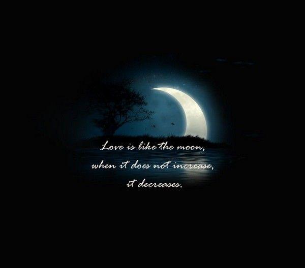 Love Quotes From Philosophers. QuotesGram |True Love Philosophy