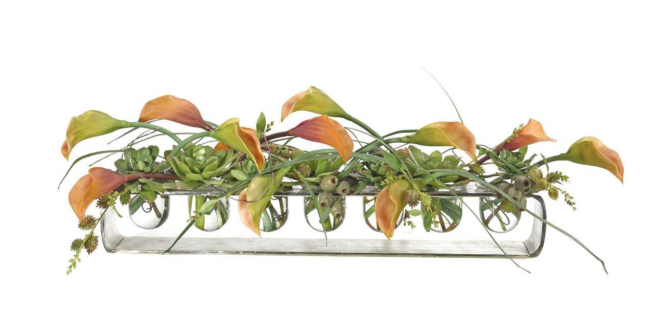 Calla Lily Succulent (OF232): Calla Lily Succulent, Sunset, Loft Vase, 42wx16dx11h