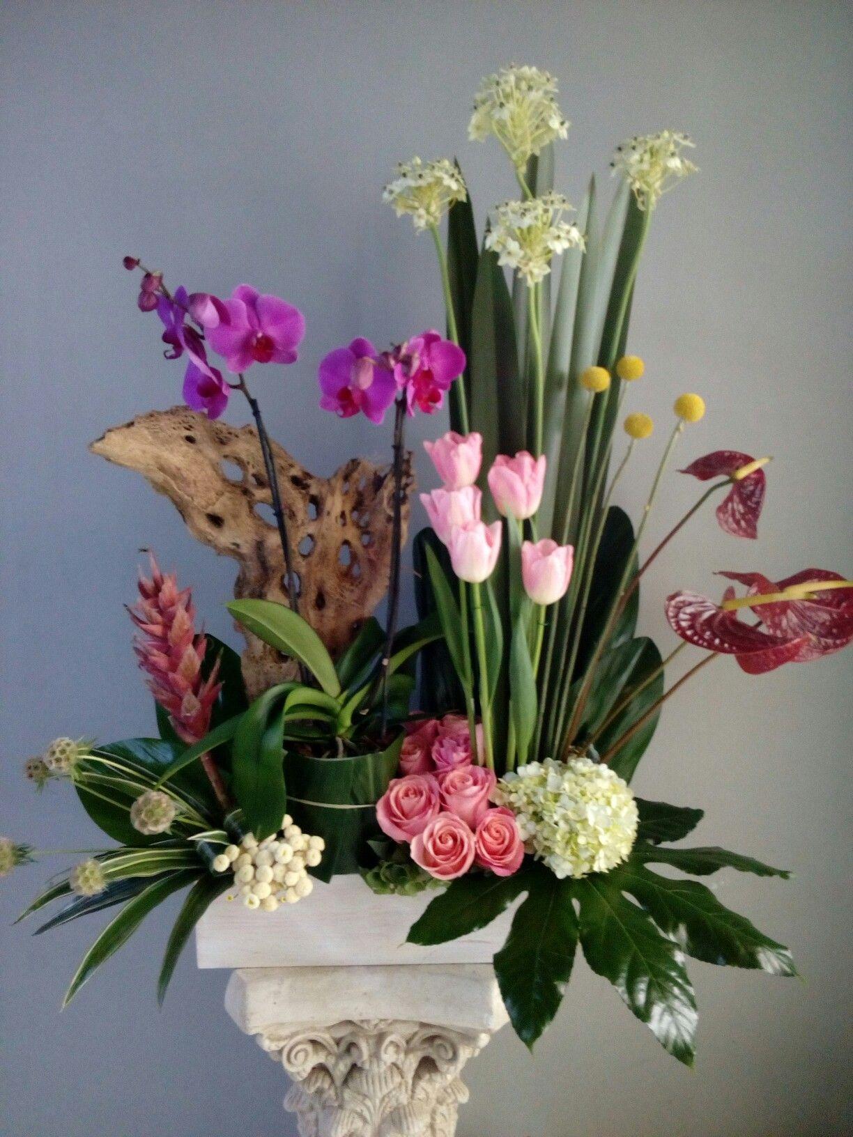 Beautiful Floral Arrangement Floofas Arreglos