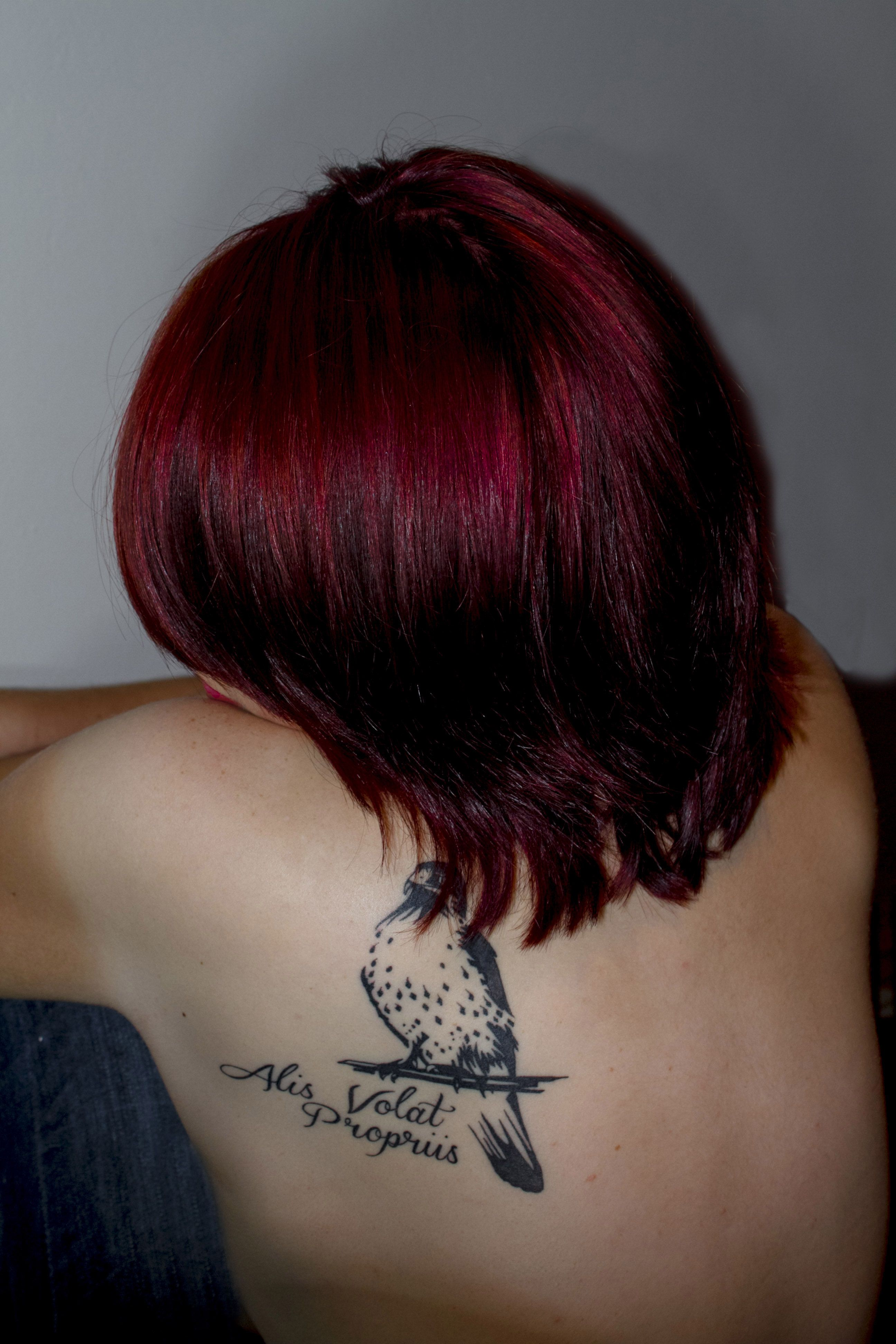 "My first tattoo, its an african hawk eagle, being a falconer birds of prey are my life, and the quote ""alis volat propriis"" translates to ""she flies with her own wings"" which perfectly describes me as an indepentant person. I absolutely love it :)"