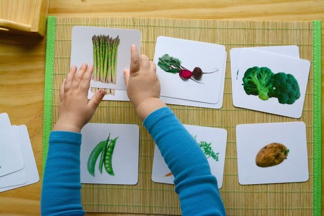Otis picture to picture matching vegetables six cards