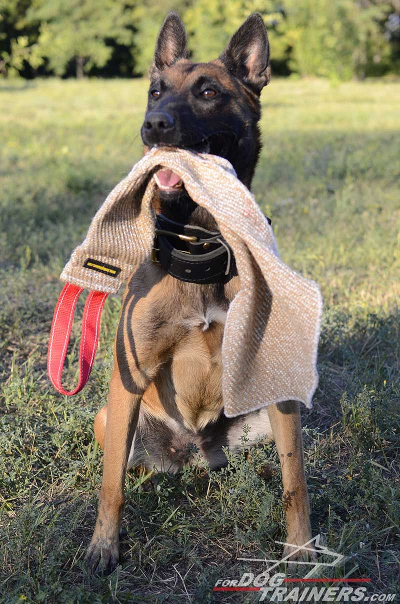 Jute Bite Rag For Belgian Malinois Bite Training Malinois Dog