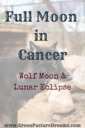 #article #Cancer #discu #full #fullmoontarotspread #Moon Full Moon in Cancer #fullmoontarotspread Full Moon in Cancer. This article discusses the aspects of and Cancer Zodiac Sign and the Lunar Eclipse. Astrology signs, full moon, astrology explanations, witch diy, witch aesthetic, lunar eclipse, wolf moon, cancer lunar eclipse, cancer zodiac ,cancer, astrology for beginners, moon magick, moon quotes, moon phases, full moon rituals, moon cycle, moon magic, astrology for beginners, zodiac ... #fullmoonquotes