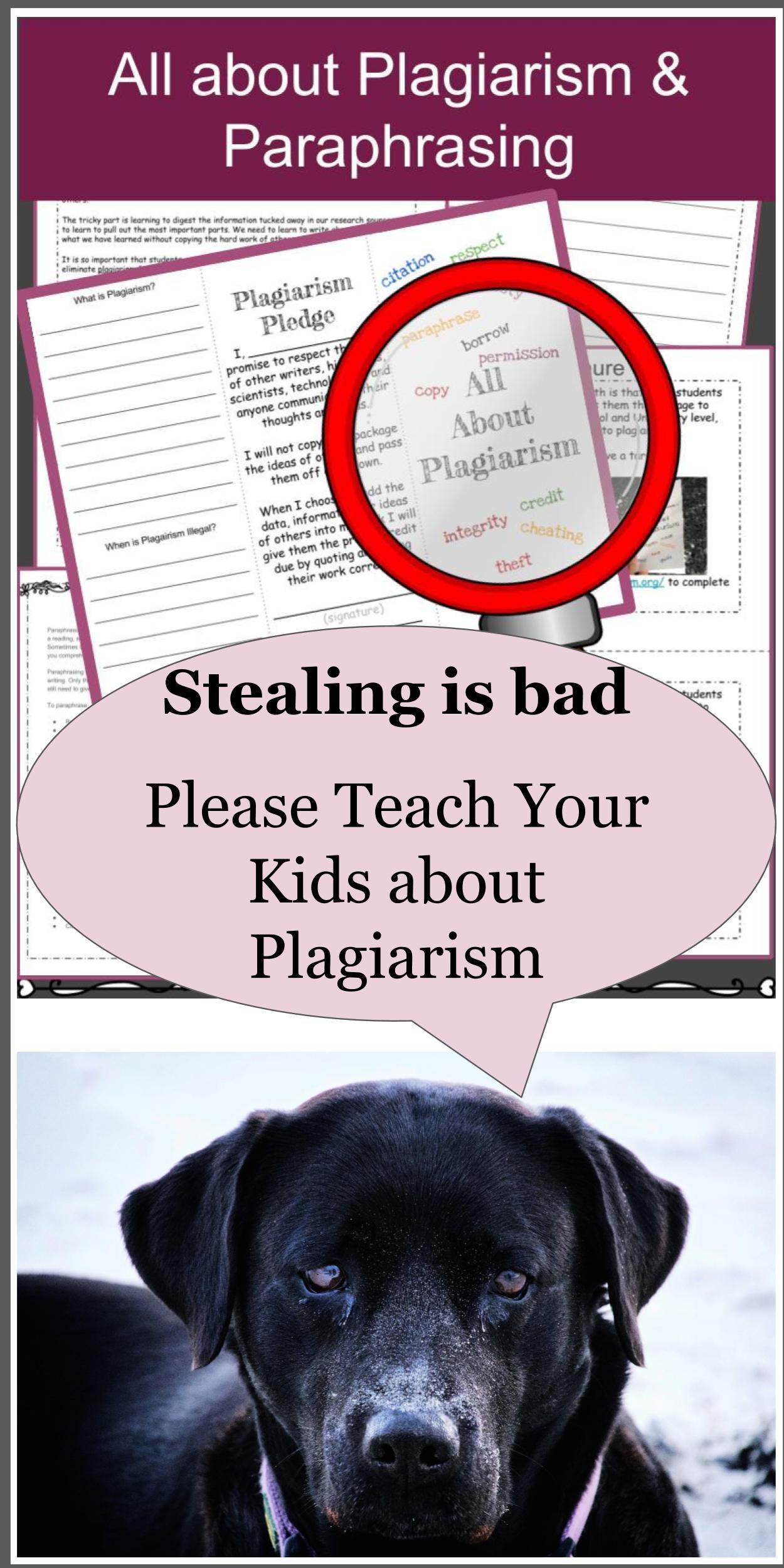 Mla Citations Mla Formatting Plagiarism And