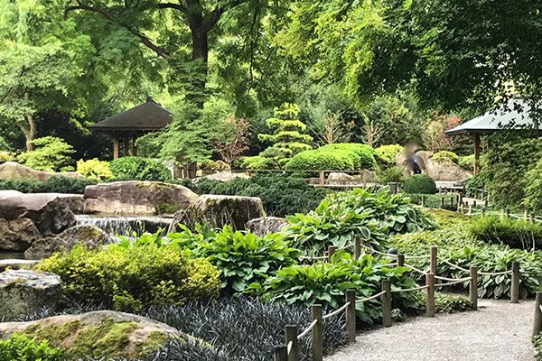 Im Botanischen Garten Augsburg Liegt Dieser Schatz Ein Japanischer Garten Tiefgehend Wohltu Botanischer Garten Augsburg Botanischer Garten Japanischer Garten