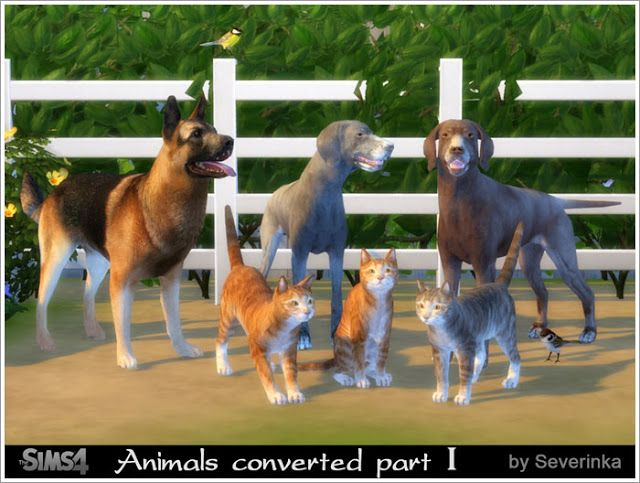 The Best Animal By Severinka Sims 4 The Sims Tiere