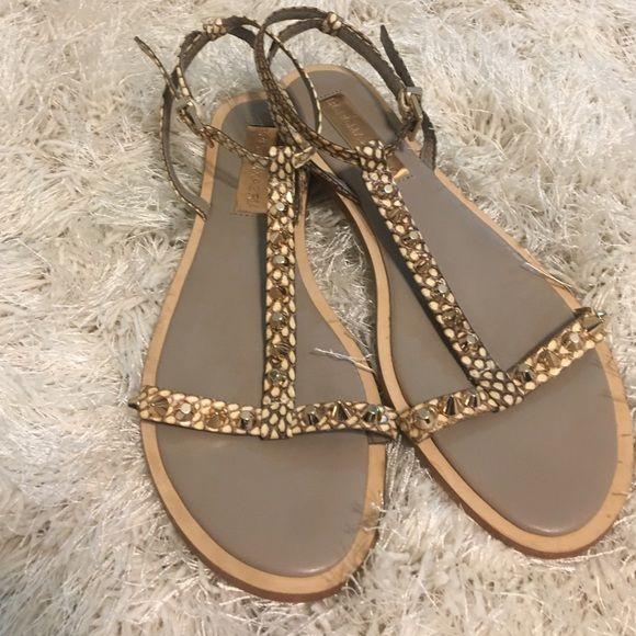 21facbf16d50 HP ⚡ ❤ STUNNING BCBG Leather Studded Flat Sandals. Studded SandalsFlat SandalsShoes  SandalsT Strap ...