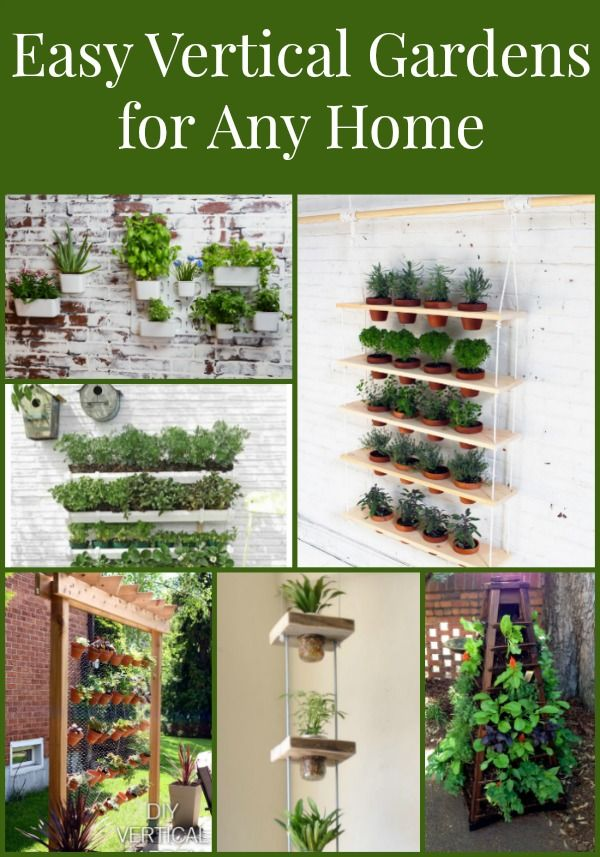 Have a garden anywhere inside or out with these Vertical Garden ...