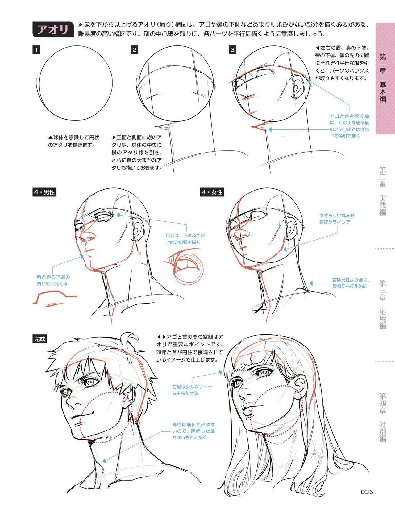 Groß Human Anatomy Drawing Lessons Galerie - Anatomie Von ...