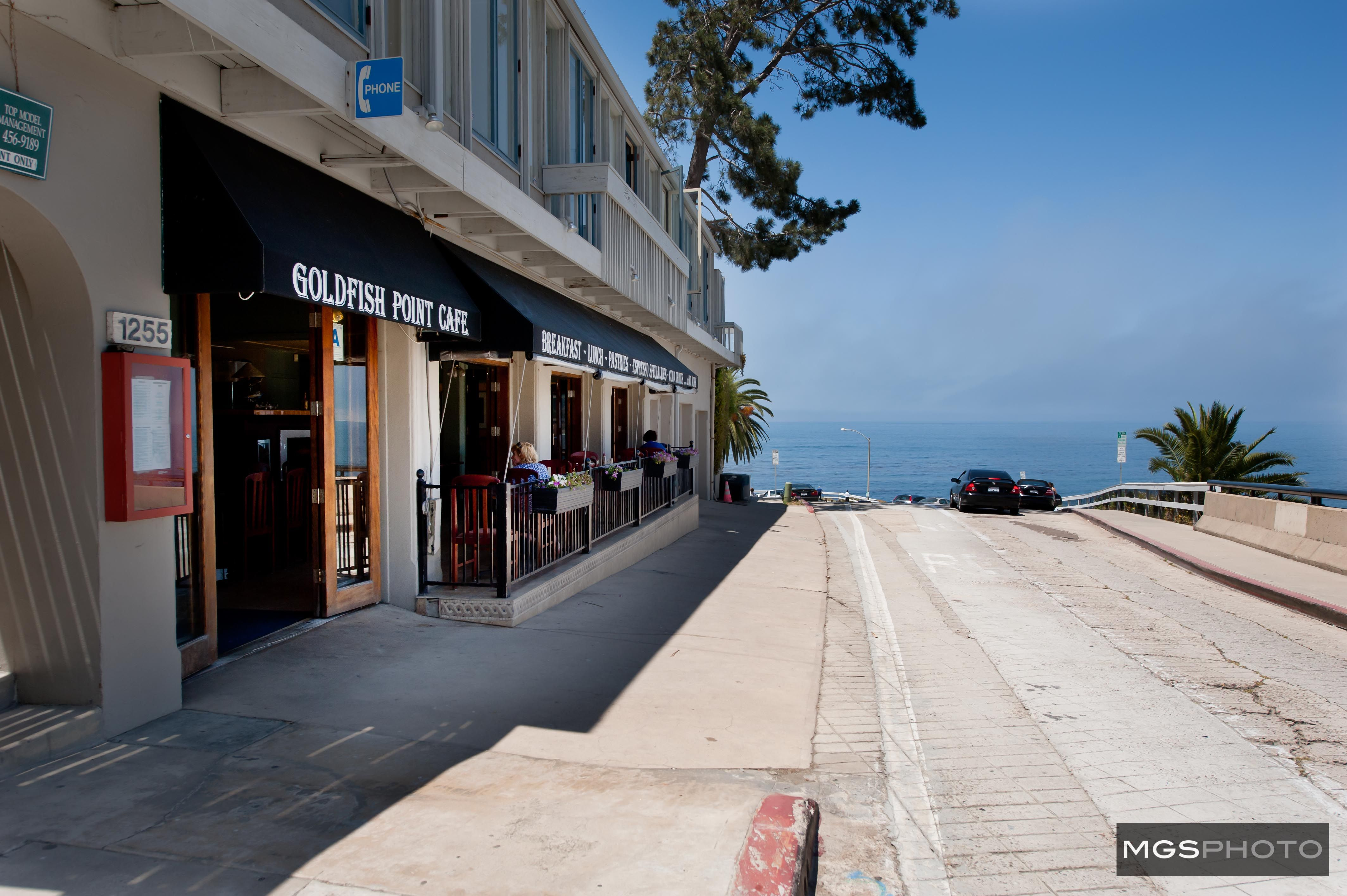 goldfish point cafe the jewell of la jolla helped keep my