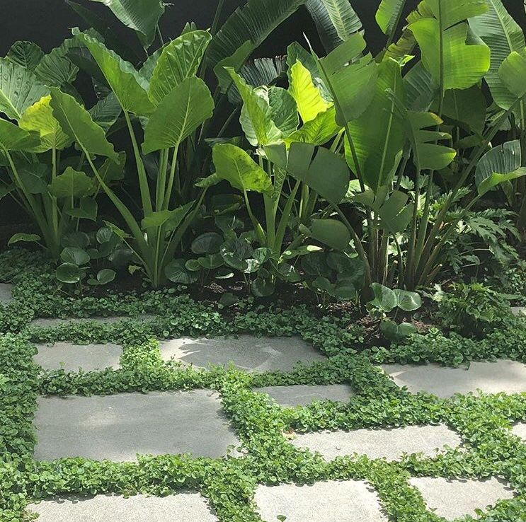 Break up certain areas of paving with low level ground